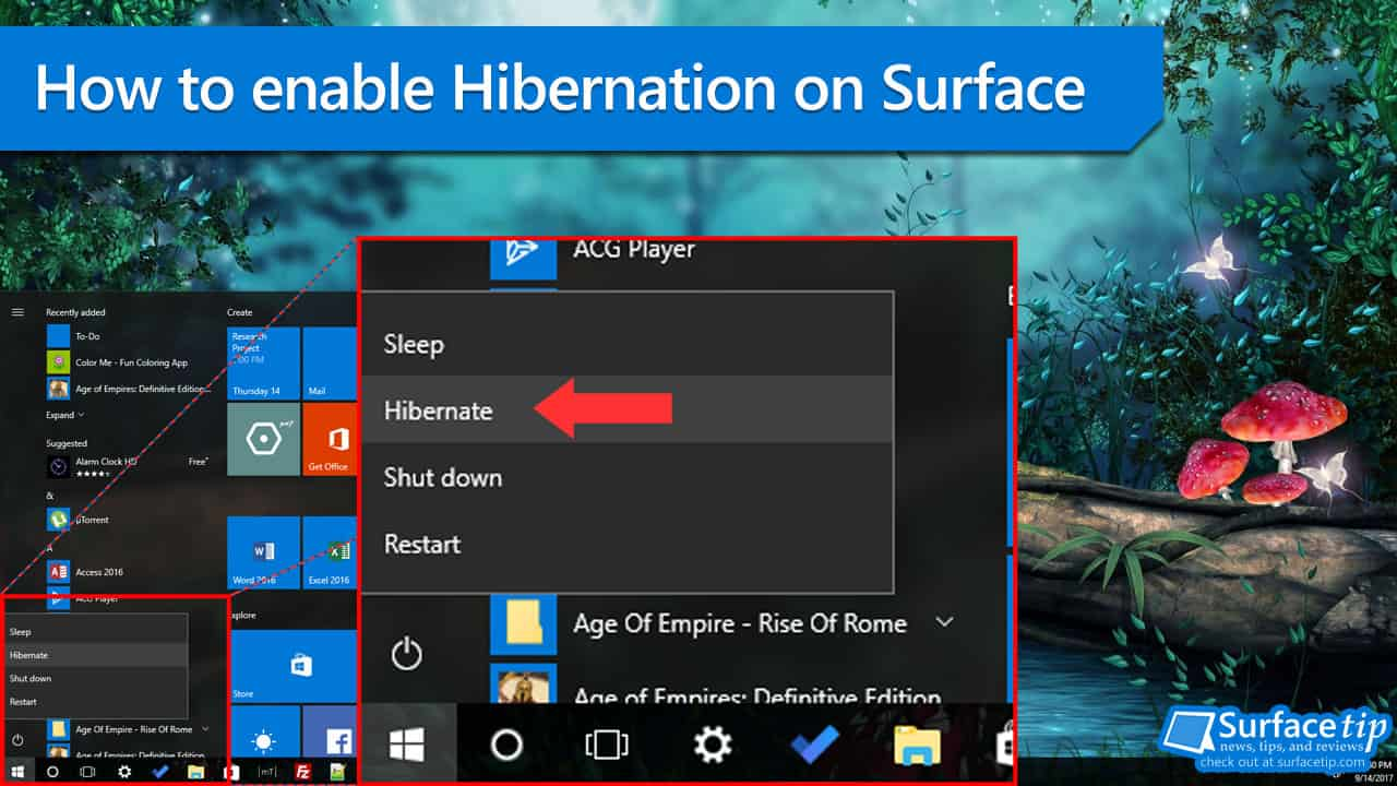 Hibernation Support on Surface